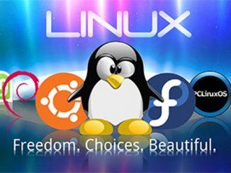 linux, centos, os, tan cong, ddos, host, vps, server