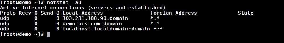 netstat linux